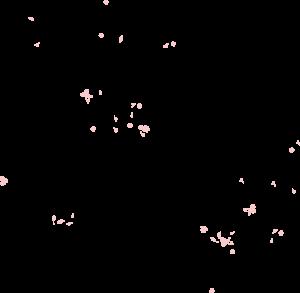 parallax-flower